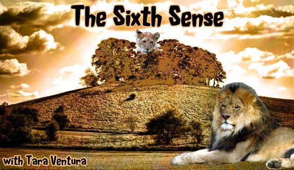 """""""The Sixth Sense"""" med Tara Ventura och Zoë Lighworker"""
