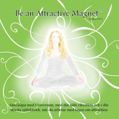 Be an Attractive Magnet Toolbox 2