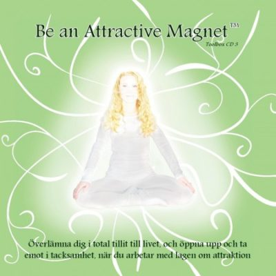 Be an attractive magnet toolbox 3