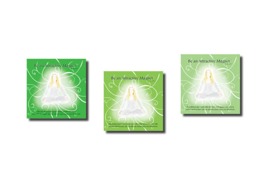 Kit 2 3st CDs Toolbox
