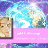 Light Gatherings mindre
